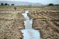 در راستای حفظ کشاورزی شادگان طرح های مناسب انجام می شود