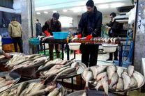 توزیع آبزیان در بازار جدید ماهی فروشان بندرعباس صورت می گیرد