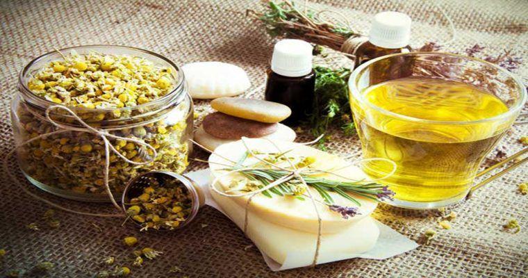 باور غلط مردم درباره گیاهان دارویی طب سنتی را تهدید می کند