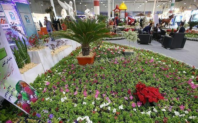 مسابقه انتخاب نمای سبز شهری و جشنوارهٔ بهاره نیلوفرانه در کرمانشاه