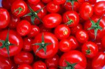 بازار مصرف همچنان منتظر ارزانی گوجهفرنگی