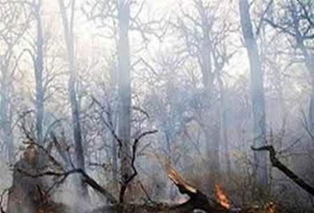 ۸ هکتار از عرصههای جنگلی شهرستان گالیکش در آتش سوخت