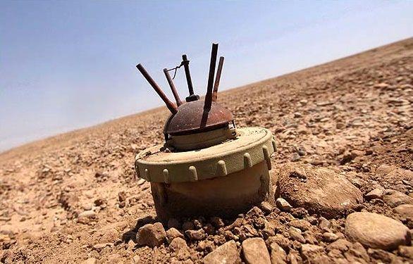 تهدید بمب های خنثی نشده به جان محیط بانان و آهوان