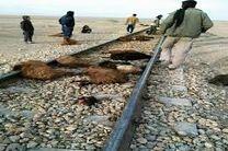 برخورد مرگبار با قطار تهران - مشهد