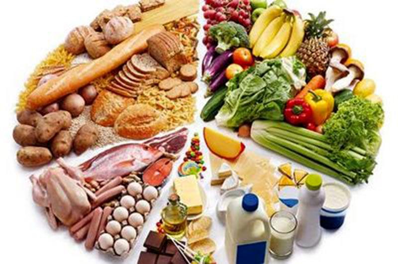 امنیت غذایی در بسیاری از کشورها اولویت اصلی کشور محسوب می شود