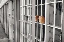 انتقال ۷ تبعه ایرانی زندانی در افغانستان به ایران