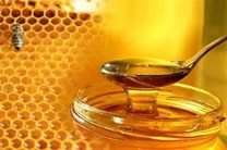 کشف بیش از یک تن عسل تقلبی در نجف آباد
