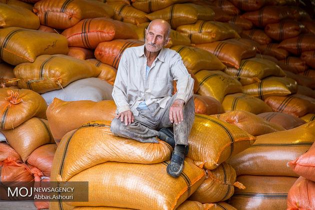 اطلاع دقیقی درباره قاچاق برنج ندارم