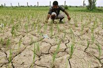 همدان مرکز انجمن های کشاورزی حفاظتی خواهد شد/ تشکیل اولین انجمن کشاورزی حفاظتی در کشور