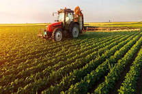 ۳ هزار میلیارد اعتبار برای تقویت صندوق بیمه محصولات کشاورزی اختصاص یافت