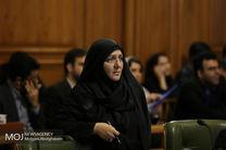 تذکر عضو شورای شهر به حناچی به دلیل فوت پسر نوجوان در پارک لاله