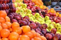 محدود شدن صادرات سیب و پرتقال تا اطلاع ثانوی