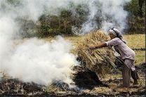 پیگرد قانونی سوزاندن ضایعات کشاورزی در گیلان