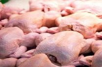 بیشترین میزان گرانی به مرغ رسید