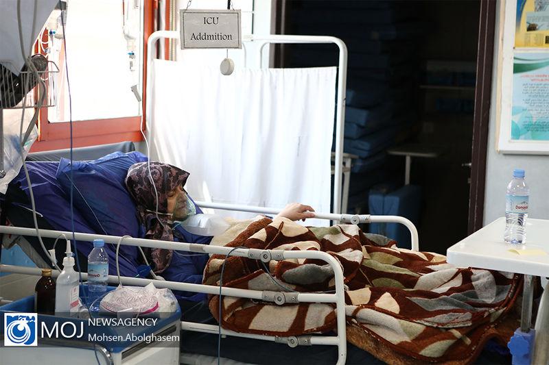 ابتلای 16 مورد بیمار جدید کرونایی در کاشان