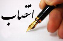 رئیس بنیاد نخبگان هرمزگان منصوب شد