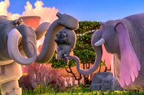 فیلشاه آماده پخش و توزیع در بازار شد