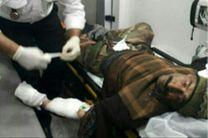 حمله پلنگ به چوپان در محدوده دربند بخش مرزن آباد