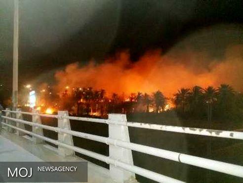 آتش سوزی در نخلستان های طویشه آبادان مهار شد