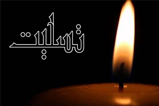 آیتالله سلیمی زنجانی درگذشت