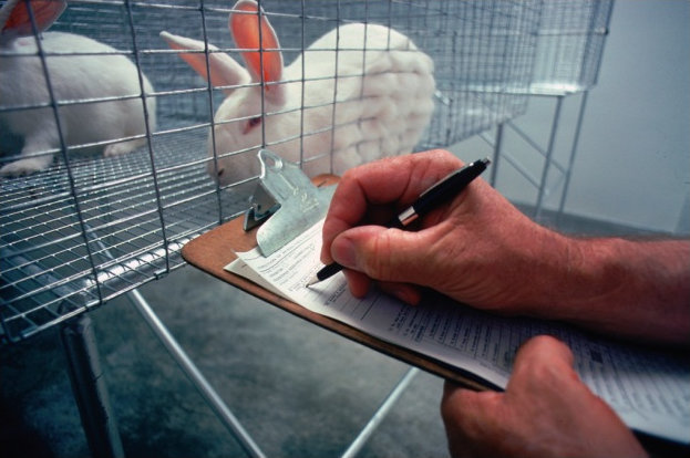 احداث مرکز ملی پرورش حیوانات آزمایشگاهی در دانشگاه آزاد ارومیه