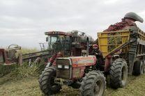 امسال 25 درصد برداشت سبز از مزارع نیشکر خواهیم داشت