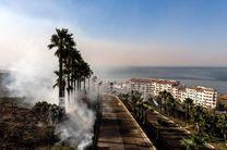 3 نفر بر اثر آتش سوزی در جنگل های مکزیک جان باختند