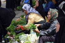 7 صندوق خرد زنان روستایی در همدان تشکیل شده است