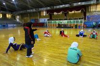 احتمال حضور همسر سرمربی والیبال درتیم ملی هندبال بانوان