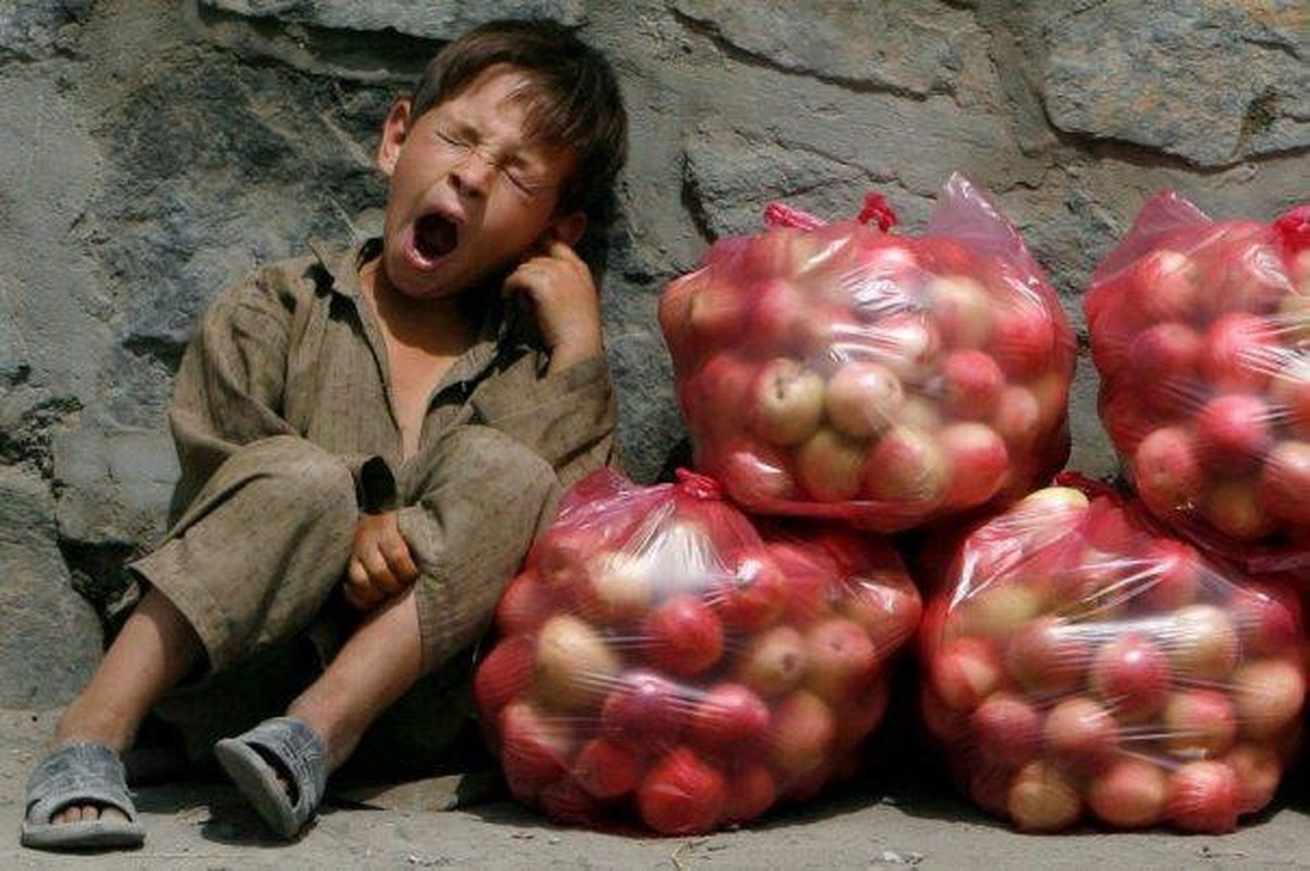 هیچ بانک اطلاعاتی از کودکان کار وجود ندارد