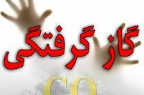 گاز منو اکسید کربن جان ۱۷ شهروند اصفهانی را گرفت