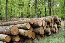 کشف 15 تن چوب قاچاق در آستانه اشرفیه