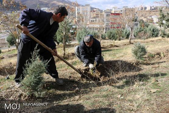 آغازعملیات احداث 3هزار متر مربع فضای سبز در بلوار 22 بهمن شهرک بهاران