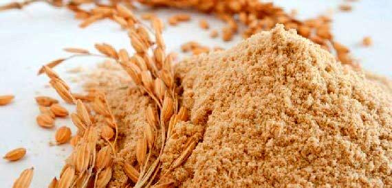 توزیع ۶ هزار و ۷۰۰ تن سبوس گندم بین دامداران هرمزگانی