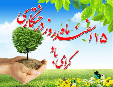 شهرداری کرمانشاه، تولد کهنسالترین درخت شهر را جشن میگیرد