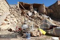 همه مناطق زلزله زده را با سگ های زنده یاب پوشش داده ایم