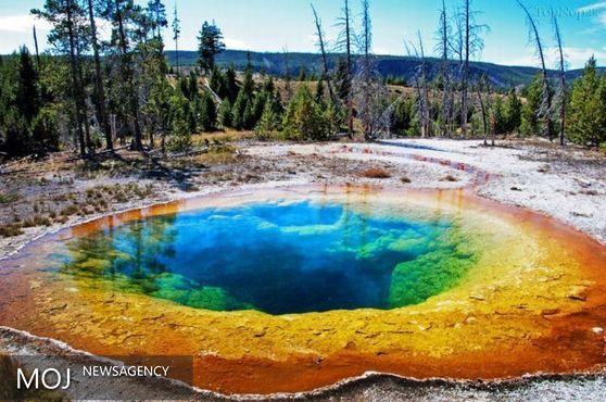 چرا چشمههای آب گرم «یلواستون» رنگارنگ می شود