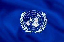 آنکارا همچنان خواهان اعمال اصلاحات در سازمان ملل است