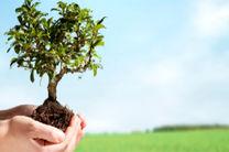 ایجاد 105صندوق حمایت از توسعه بخش کشاورزی