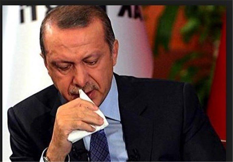 اردوغان کشتار مسلمانان در میانمار را به شدت محکوم کرد