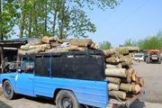 کشف چوب قاچاق در آستانهاشرفیه