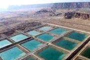 هرمزگان می تواند نیازهای شیلاتی قزاقستان را تامین کند