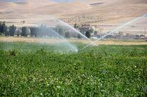 ۱۵۰۰هکتار از اراضی کشاورزی مرکزی به سیستم نوین آبیاری مجهز می شود