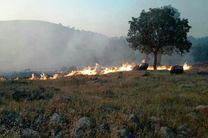 پنج هکتار از منابع طبیعی گلستان طعمه حریق شد