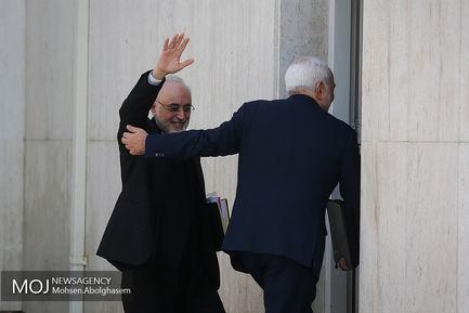 حاشیه جلسه هیات دولت - ۳ بهمن ۱۳۹۷/علی اکبر صالحی رییس سازمان انرژی اتمی