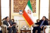 ایران و ژاپن برای گسترش مناسبات فیمابین از ظرفیتهای فراوانی برخوردارند