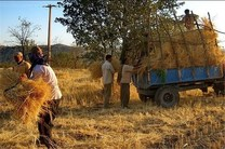 بخشودگی سود و وجه التزام 160 هزار خانوار روستایی