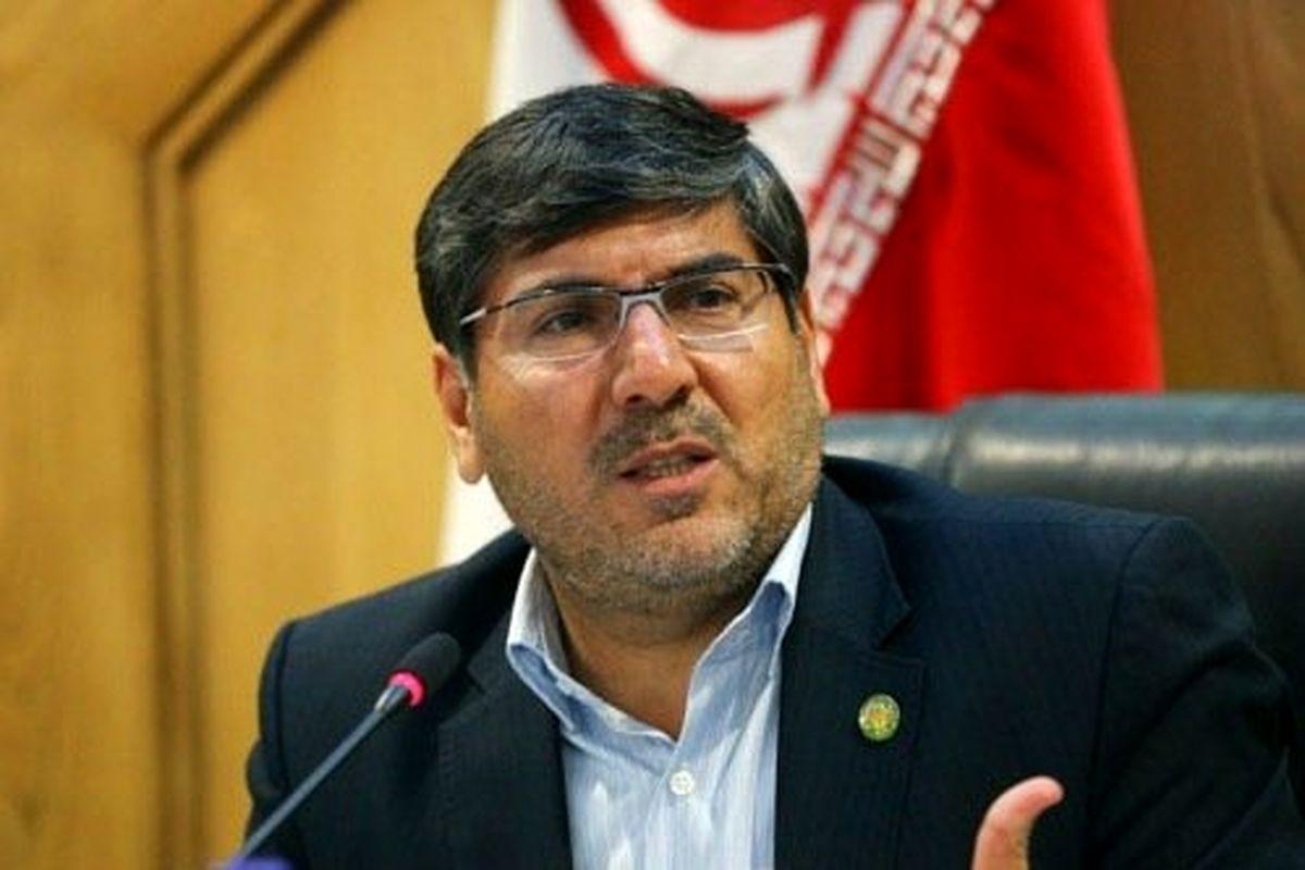 شاید برای پلاک گذاری خودروها در تهران محدودیت اعمال کنیم