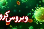 305 ابتلای جدید به ویروس کرونا در اصفهان / فوت 43 بیمار