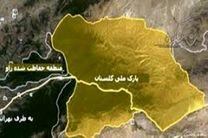 افزایش ۱۵ درصد آمار قوچ و میش، آهو و کل بزهای پارک ملی گلستان